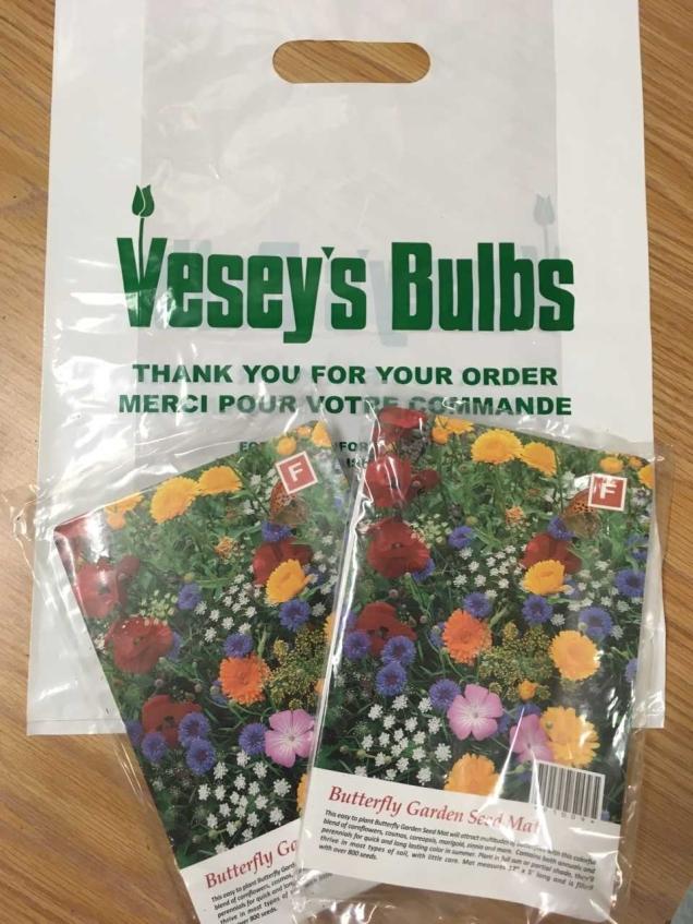 vesey here